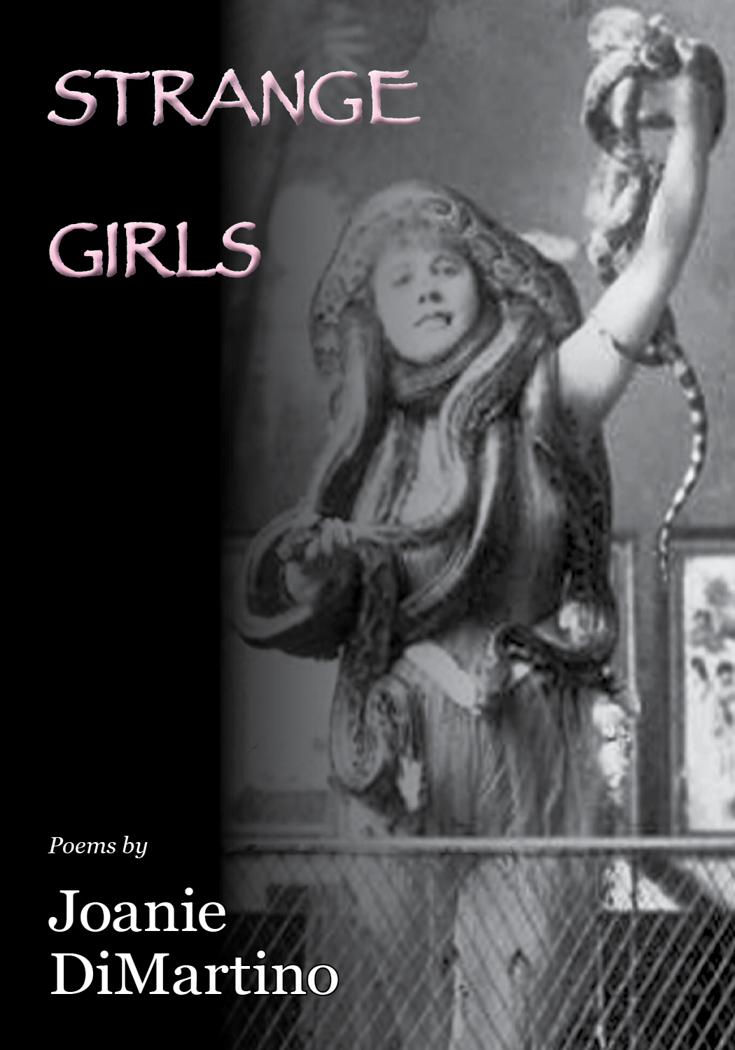 The Story of the Circus Women- an Era forgotten-that played a role in womens rights. The Snake Charmer, The Bearded Lady Tatoo Lady, and many others....